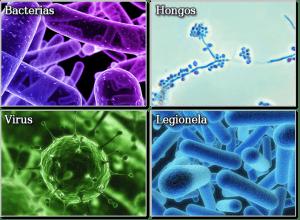 Desinfección de bacterias, hongos, virus y legionella
