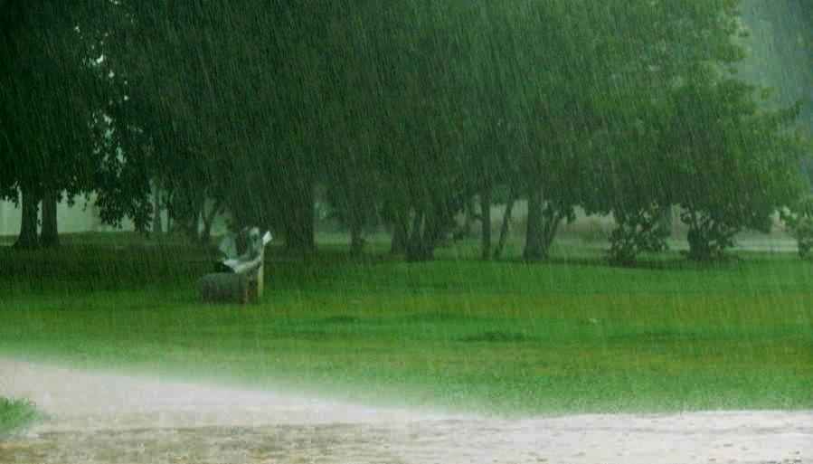 lluvia plaga