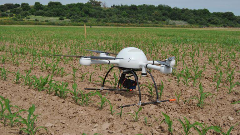 drones para el control de plagas