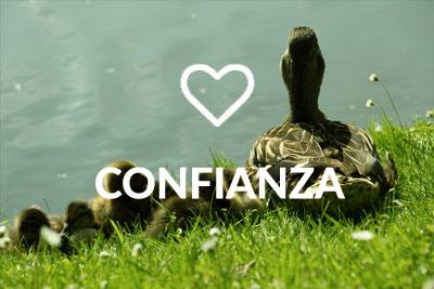 Confianza Byostasys